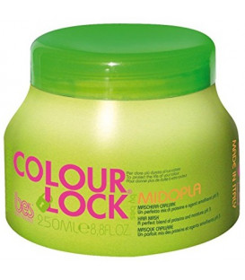 BES Colour Lock Midopla maska matiem (250ml)
