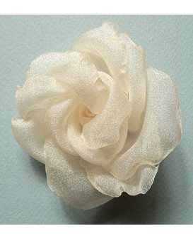 JZA dekoratīva roze