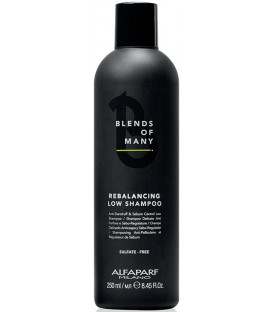 Alfaparf Milano Blends Of Many Rebalancing shampoo