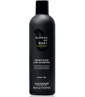 Alfaparf Milano Blends Of Many Energizing shampoo