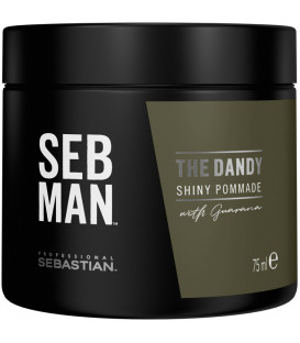 Sebastian Professional Seb Man The Dandy pomade