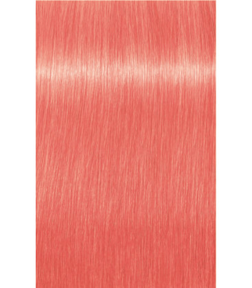 Indola Color styling mousse