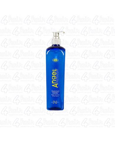 Angel Professional Deep Cleansing Shampoo