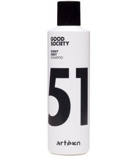 Artego Good Society 51 Shiny Grey шампунь