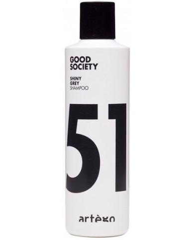 Artego Good Society 51 Shiny Grey шампунь