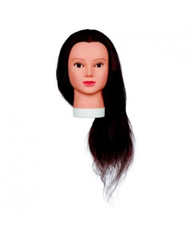 Sibel Lady 60 учебная голова